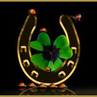 7 amuletos caseros para atraer el dinero