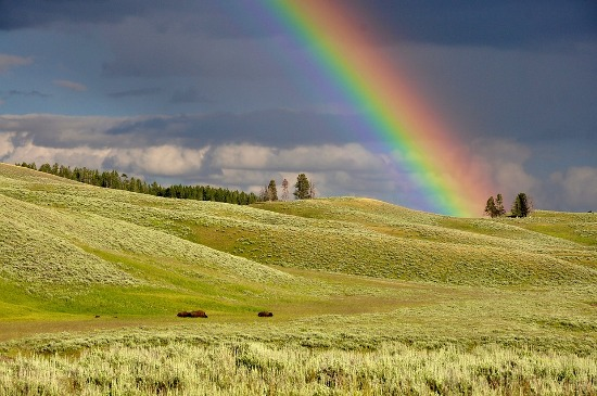 Angeles - arco iris