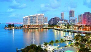 Videntes en Miami