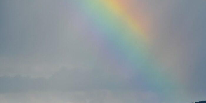 Conoce los 7 rayos de la metafísica