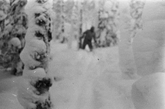teoría del hombre de las nieves en el caso diatlov